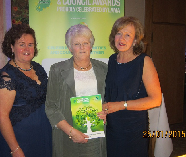 Suzanne Gunne, Anna Fitzpatrick & Mary Lawlor representing drumlane.ie at the awards ceremony Plaza Hotel Dublin